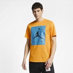 Koszulka Air Jordan Poolside Tee CD0542-739