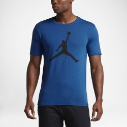 Koszulka Air Jordan Iconic Jumpman Logo SOAR 834473-477