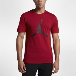 Koszulka Air Jordan Tee Iconic Jumpman 908017-687