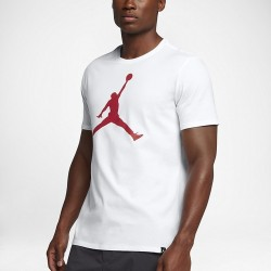 Koszulka Air Jordan Tee Iconic Jumpman 908017-100