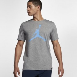 Koszulka Air Jordan Tee Iconic Jumpman 908017-091