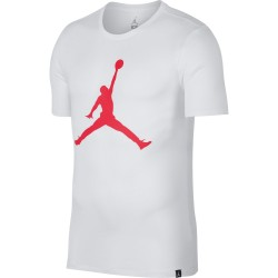 Koszulka Air Jordan Tee Iconic Jumpman 908017-104