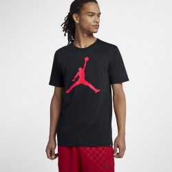 Koszulka Air Jordan Tee Iconic Jumpman 908017-014