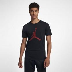Koszulka Air Jordan Iconic Jumpman AA1905-010
