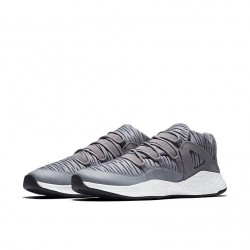 Air Jordan Formula 23 Low Cool Grey/Grey-White 919724-004