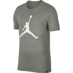 Koszulka Air Jordan Tee Iconic Jumpman 908017-307
