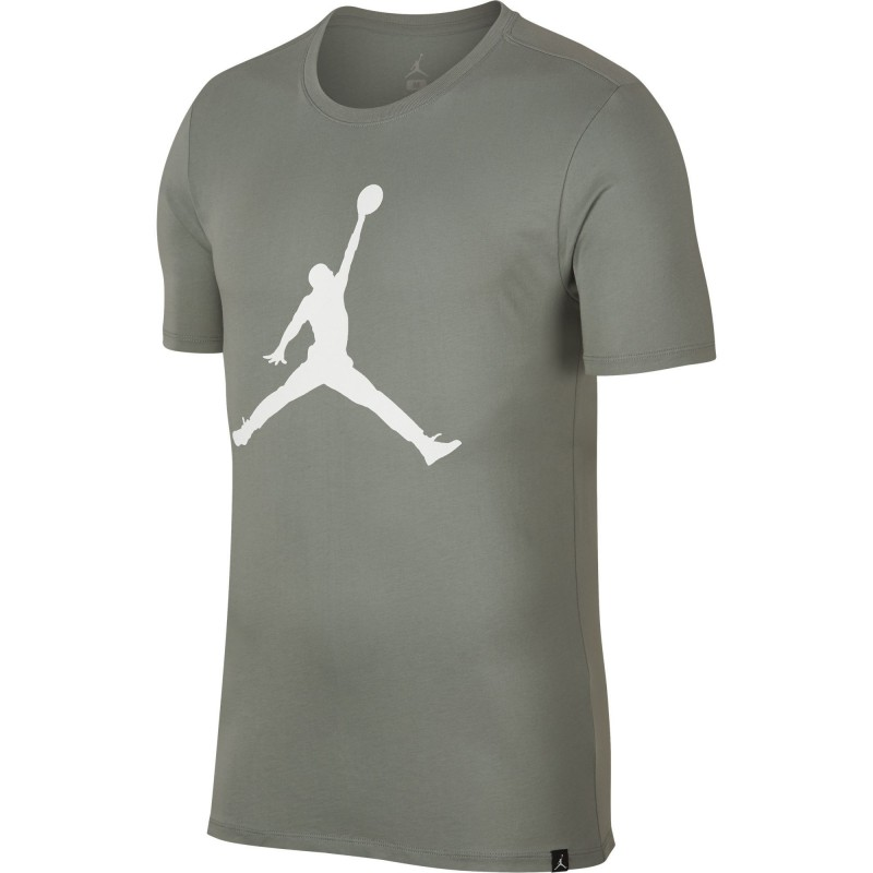 Koszulka Air Jordan Tee Iconic Jumpman 908017-307